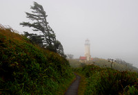 Oregon Coast Lighthouse 4889